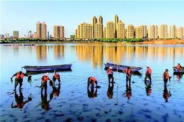 武汉一地紧抓生态环保主体责任 12名干部被追责
