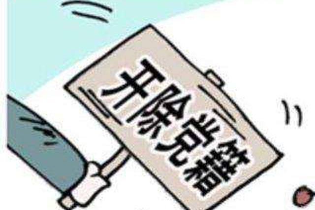 """咸宁市公安局法制支队原支队长程隽逸被""""双开"""""""