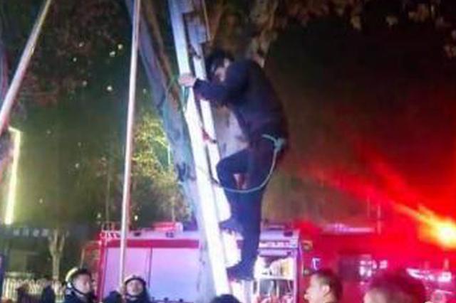 湖北襄阳一男子爬树救流浪猫被困 消防架梯救人