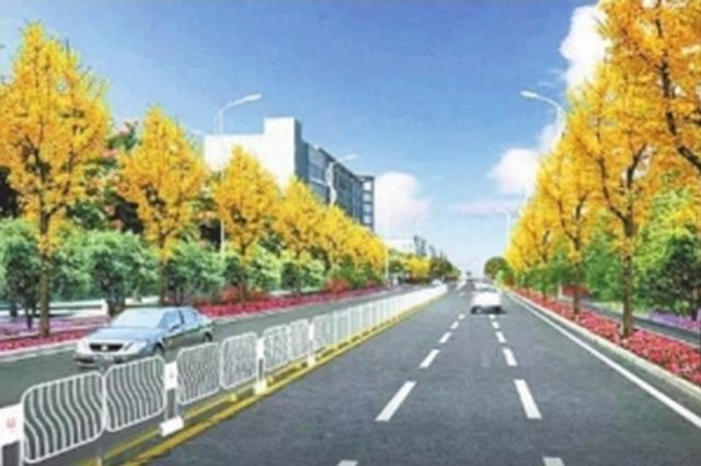 武汉新华路将新增6座人行天桥 人车各行其道