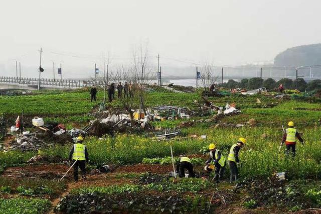 """武汉一生态湖被""""开垦""""成私家菜园 城管怎么做"""