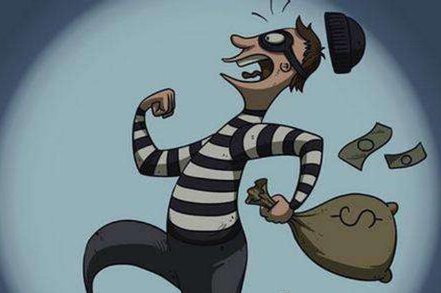 躲监控跨区销赃终被擒 武汉警方追踪1年揪出狡猾窃贼