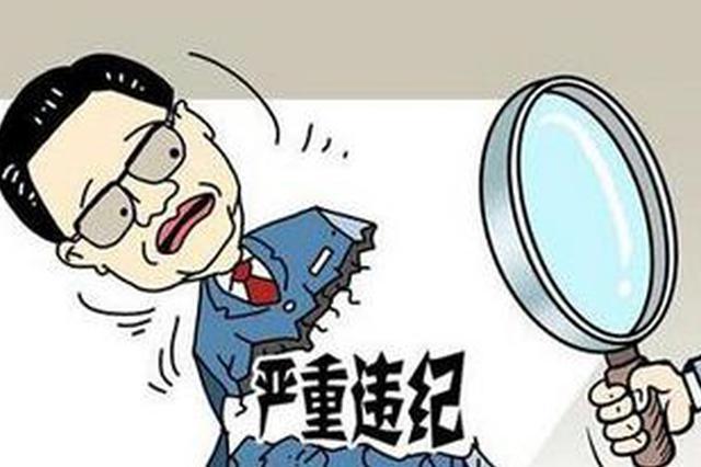 襄阳两名干部涉嫌违纪违法正接受审查和调查