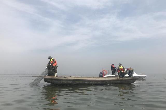 """汤逊湖投放400万斤鲢鳙""""以鱼控藻"""" 请垂钓者离开"""