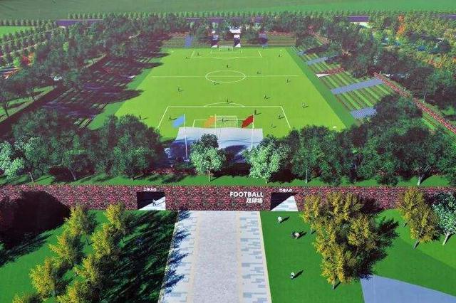 武汉要打造全国一流足球之城 新建卓尔足球公园