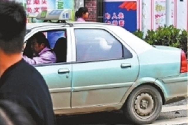 出租车车身布满灰尘 记者李永刚 摄