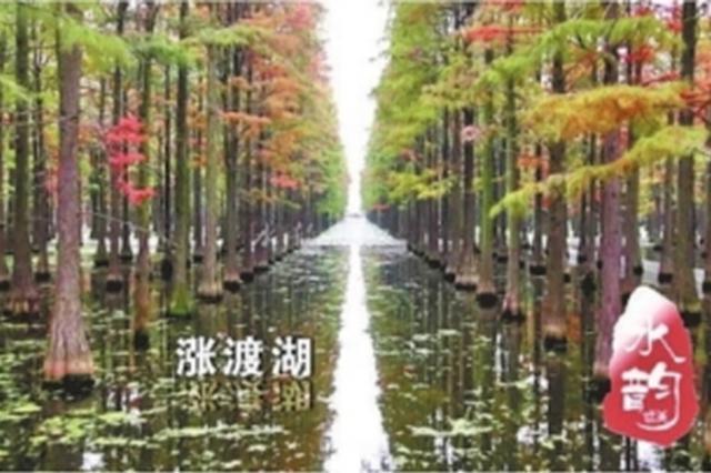 武汉发布162个湖泊体检报告 牛山湖水质可供生活饮用
