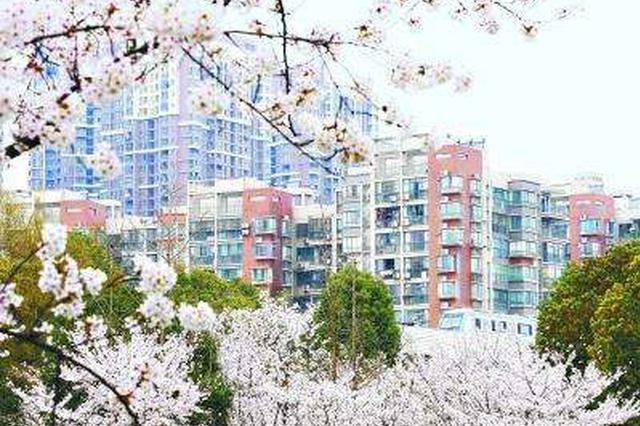 武汉开通定制公交樱花专线 东湖樱园至光谷一站直达