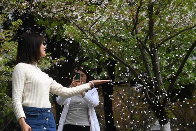 武汉周末多云伴有零星小雨 冷空气送来5级阵风