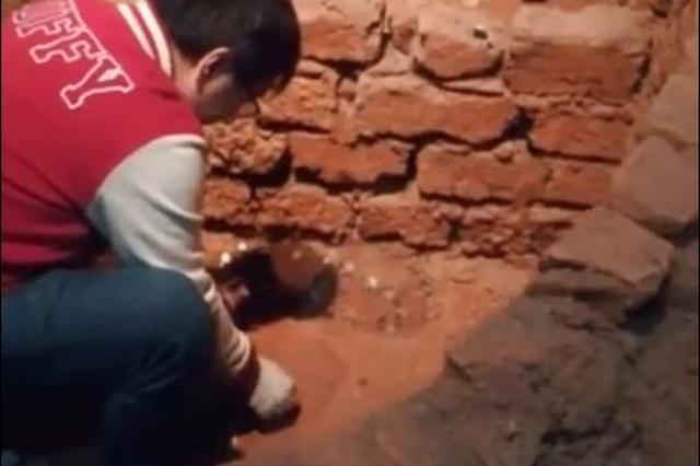 复原遗址被当成许愿池 湖北省博物馆回应:已清理