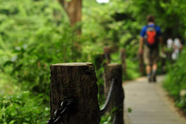 这5年武汉绿道、步道建得多 徒步、马拉松成健身新宠