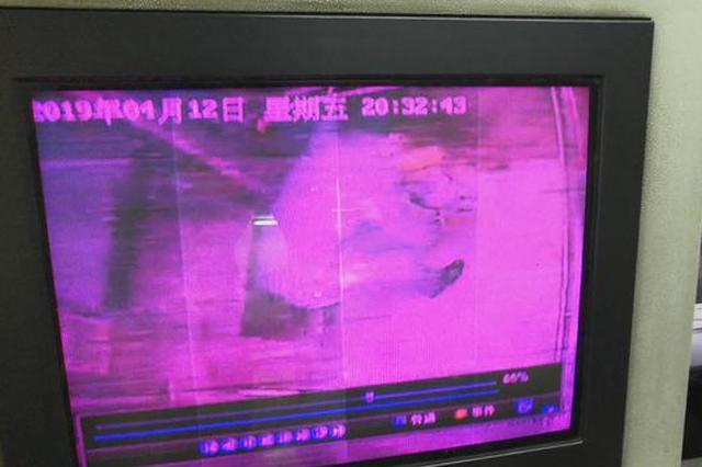 男子往电梯里倒渣滓 涉嫌故意扰乱公共秩序或面临拘留