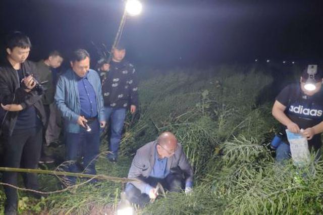 三天两夜 湖北钟祥警方破获一起杀人分尸案