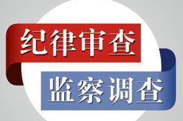 孝感市委组织部原党员电化教育中心主任罗龙进被调查