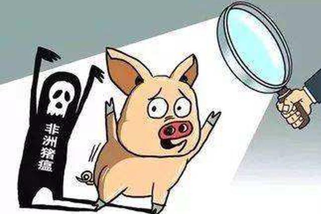 湖北省恩施州利川市非洲猪瘟疫区解除封锁