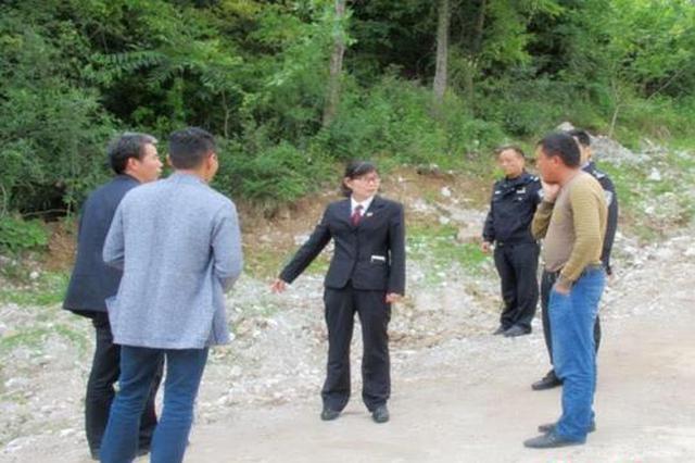 湖北三男子毁坏公益林 被追刑责还要修复生态