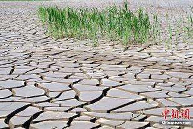 湖北546万余人因旱受灾 救助应急响应调整为Ⅲ级