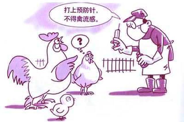 湖北省政府发布《加强动物防疫体系和能力建设的意见》