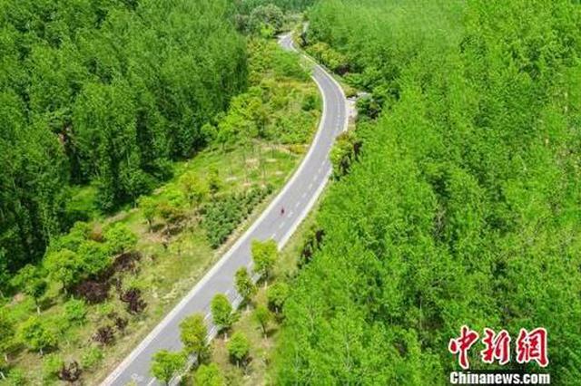 武汉将新建城市绿地2000公顷 相当于50座黄鹤楼公园