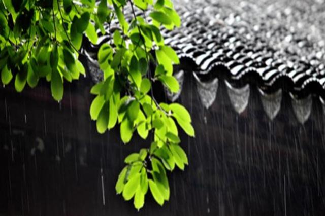 一夜之间天气转凉 两个月来武汉昨日最凉快