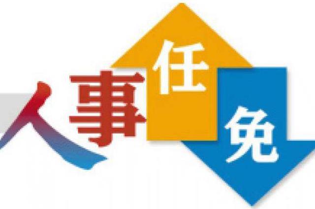 武汉发布最新一批人事任免 涉两名局级干部