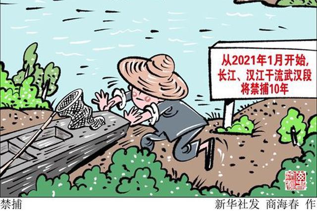 2021年1月起 长江汉江干流武汉段将禁捕10年