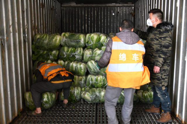 130吨东北大白菜通过铁路紧急发往武汉