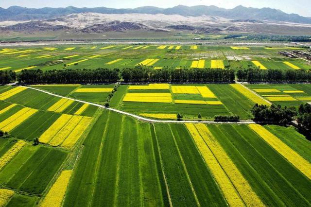 湖北有序放开部分涉农企业复工与劳动力流动
