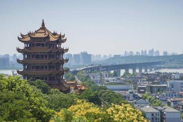 武汉整体为中风险区 其中5个区降为低风险区