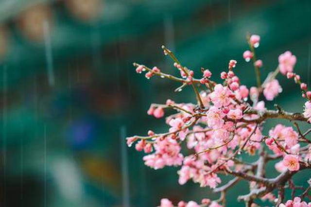 周六雨水将上演重头戏  武汉最高气温将跌下20℃