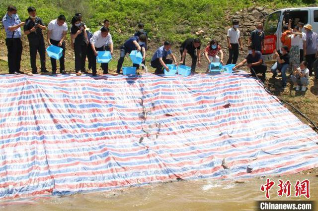 湖北两男子非法捕捞水产品获刑 宣判后放流鱼苗