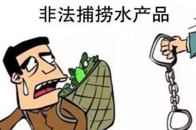 湖北向长江流域非法捕捞亮剑 半月破获51起涉刑案件