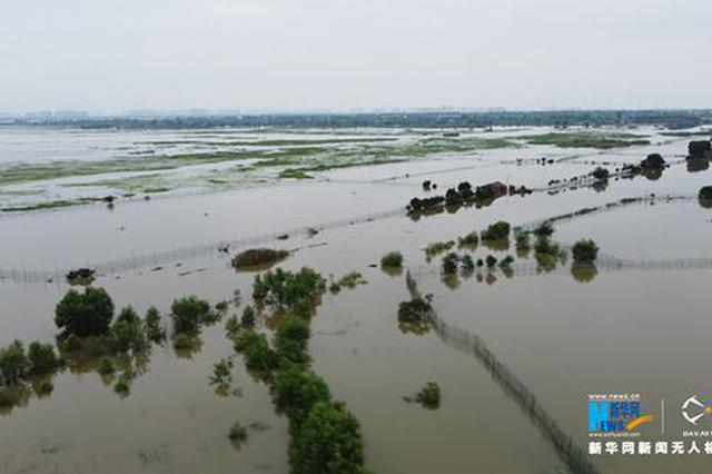湖北荆门市防汛应急响应由Ⅲ级提升为Ⅱ级