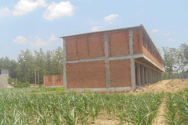 我省全面摸排农村乱占耕地建房问题