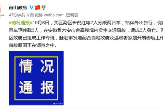 武汉青山区女副区长外出旅行身亡 官方回应