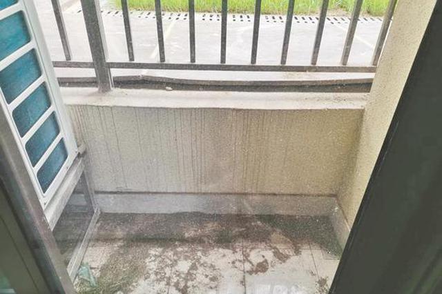 女子花400万买二楼房 交房后发现阳台比路面低一截