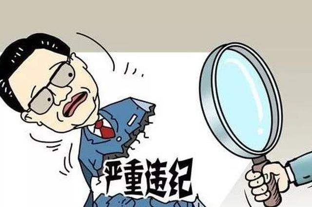 严重违纪违法!湖北一公安局党委委员赵宏维被查
