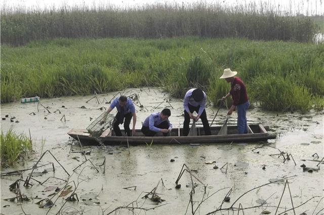 湖北省开展秋冬季野保行动 这些行为将受严惩