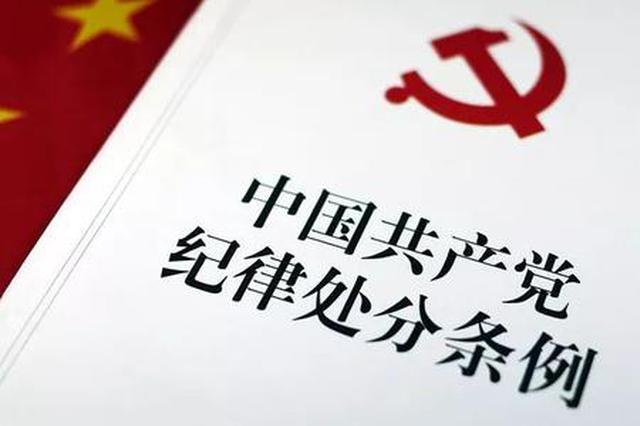 宜城今年党纪政务处分184人 其中科级干部26人