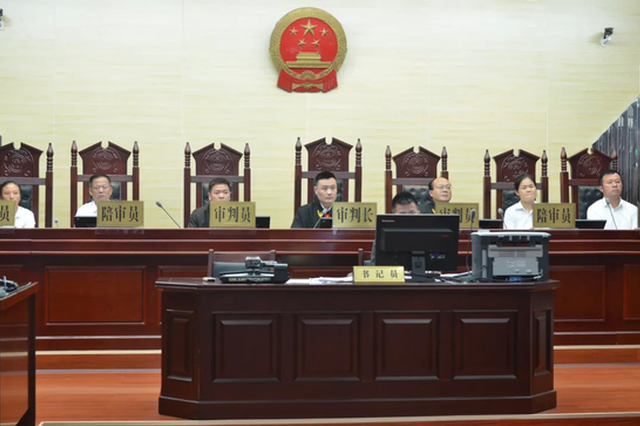 咸宁一涉黑案由二审法院副庭长一审 回应:不影响上诉