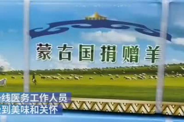 蒙古国赠羊抵达恩施:将分给12个新冠定点救治医院
