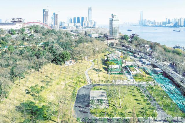武汉龟山景区生态修复进入收官阶段