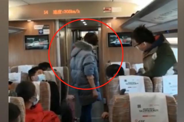 女子高铁外放音乐不戴口罩打哭乘务员 武铁警方已介入