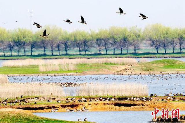 武汉今年将建120座公园及100公里绿道