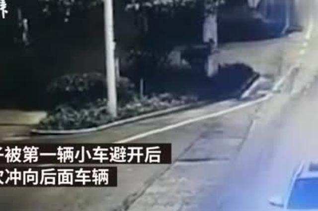 男子与女友吵架后逆行跑向车流 小车避闪不及与其相撞