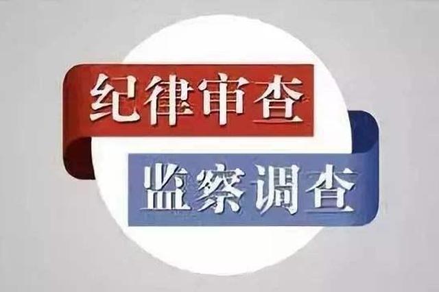 潜江市公安局原党委委员董正平接受纪律审查和监察调查