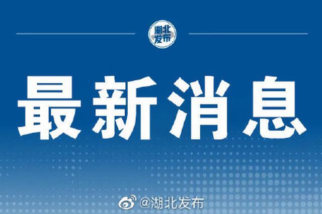 武汉发布最新人事任免:张文彤被免去副市长职务
