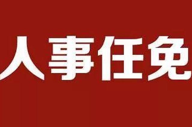 武汉市最新人事任免