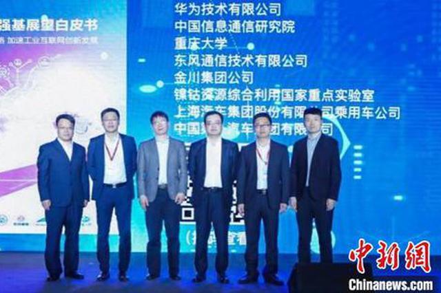 《网络体系强基展望白皮书》在武汉发布