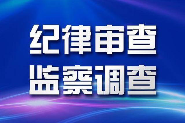 武汉市城投集团党委委员、副总经理杨枫接受调查